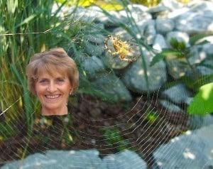 Nicht nur Spinnen weben Netze