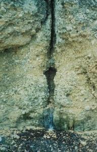Gesteinsbruch (Erdspalte) mit Wasserader. Rutengänger sprechen von Spaltwasser (sehr starke Störung).