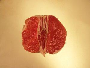 erotic orange