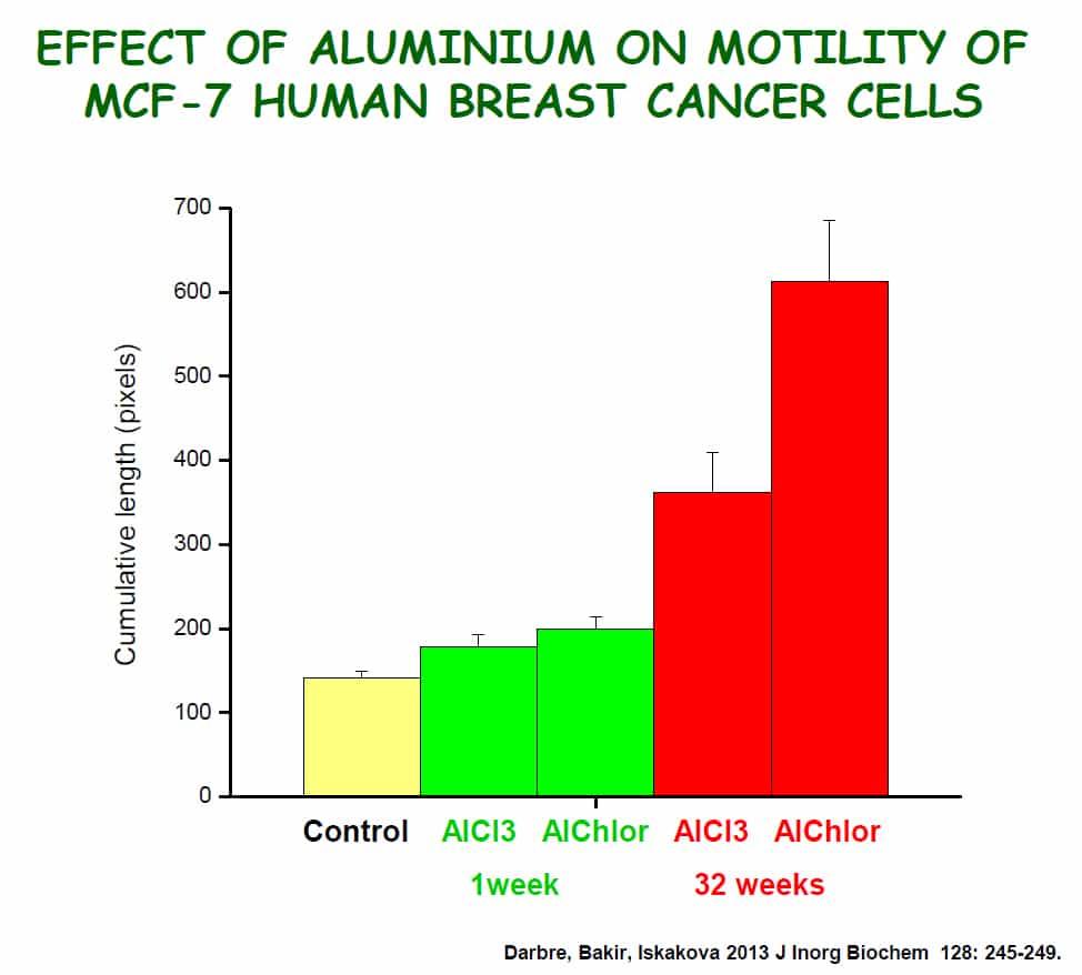Aluminium fördert Beweglichkeit von Brustkrebszellen