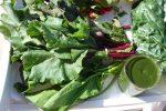 grüne Gemüseblätter