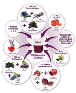 grafik-vitalkomplex-vitamine