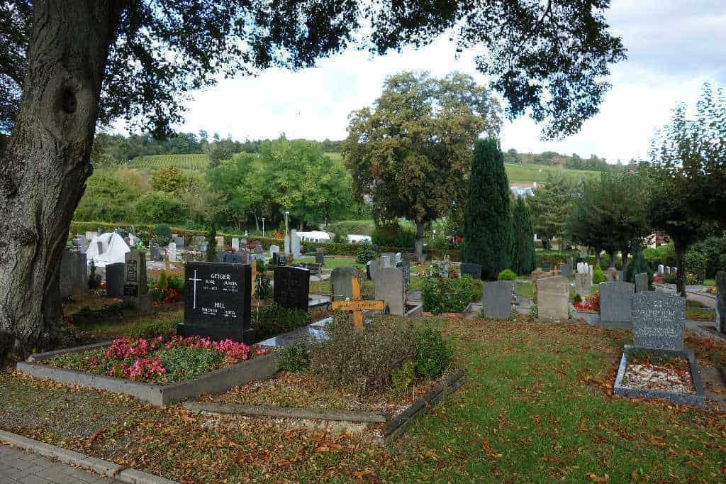 Nahtoderfahrungen: dem Tod begegnen und das Leben gewinnen